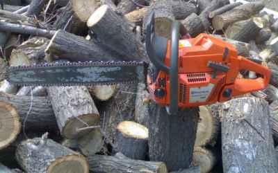 Спил опиловка обрезка валка деревьев продажа дров - Астрахань, цены, предложения специалистов