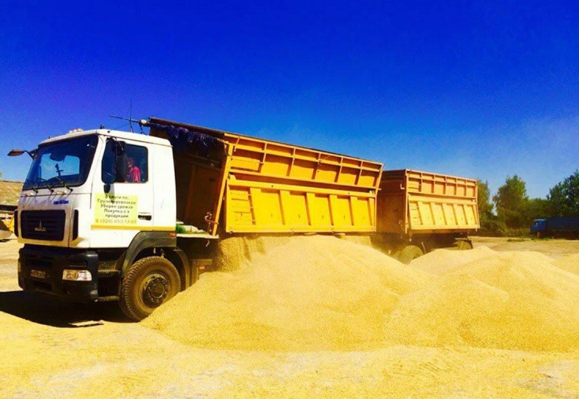 Прием заявок на перевозку зерна и кормов. Диспетчерская - Астрахань, цены, предложения специалистов