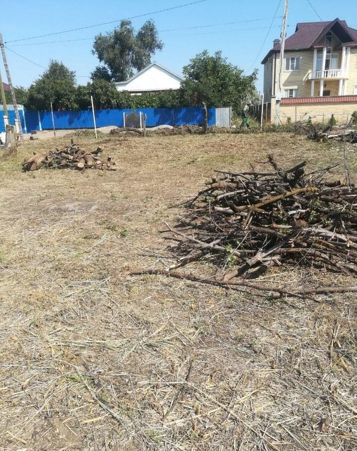 Спил деревьев - Астрахань, цены, предложения специалистов