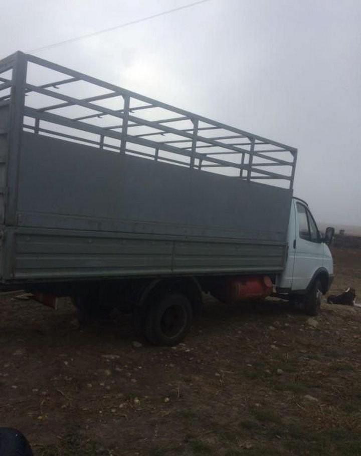 Перевозка скота, животных - Харабали, цены, предложения специалистов